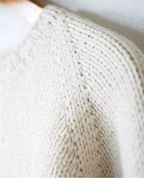 A raglan sleeve grows out of the neckline.
